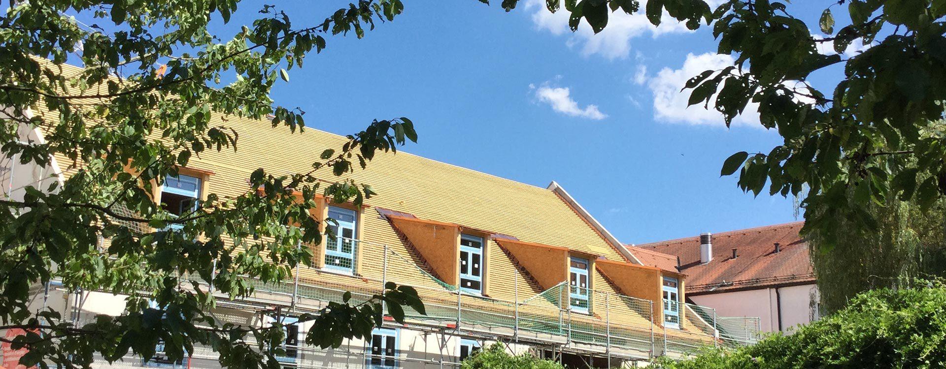 Gauben und Dachfenster